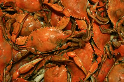 Mexican crabs